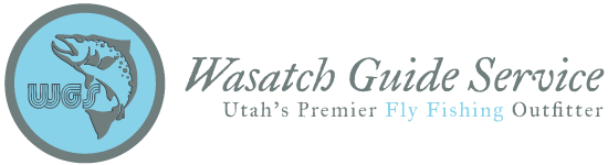 Fish The Provo, Wasatch Guide Service